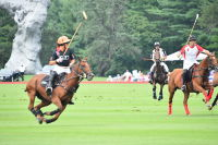 Harriman Cup Party at Greenwich Polo Club #5