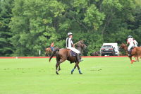 Harriman Cup Party at Greenwich Polo Club #7