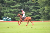 Harriman Cup Party at Greenwich Polo Club #8
