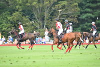 Harriman Cup Party at Greenwich Polo Club #10