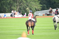 Harriman Cup Party at Greenwich Polo Club #71