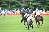 Harriman Cup Party at Greenwich Polo Club #83