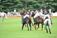 Harriman Cup Party at Greenwich Polo Club #84