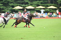 Harriman Cup Party at Greenwich Polo Club #86