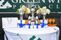 Harriman Cup Party at Greenwich Polo Club #98