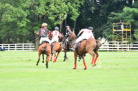 Harriman Cup Party at Greenwich Polo Club #103