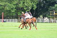 Harriman Cup Party at Greenwich Polo Club #104