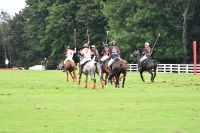 Harriman Cup Party at Greenwich Polo Club #105