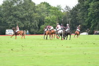 Harriman Cup Party at Greenwich Polo Club #107