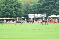 Harriman Cup Party at Greenwich Polo Club #202