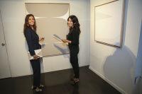 Voltz Clarke Gallery Opening #1