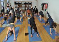 Avocado's NYC Yoga Event #22