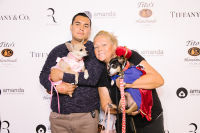 Bow Wow Beverly Hills Presents 'Hound Dog' Benefiting the Amanda Foundation #63