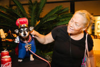 Bow Wow Beverly Hills Presents 'Hound Dog' Benefiting the Amanda Foundation #107