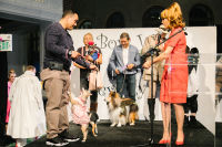 Bow Wow Beverly Hills Presents 'Hound Dog' Benefiting the Amanda Foundation #131