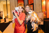 Bow Wow Beverly Hills Presents 'Hound Dog' Benefiting the Amanda Foundation #200