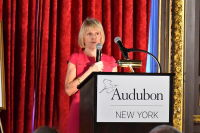The 2018 Audubon New York Keesee Award Luncheon #161