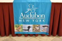 The 2018 Audubon New York Keesee Award Luncheon #8
