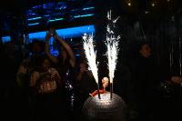 Sterling McDavid's Studio 54 30th Birthday Party #300