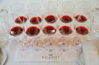 Rediscover Chianti Classico with Wine Legends Michael Mondavi and Baron Francesco Ricasoli #15