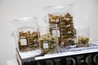 The Greenleaf Cannabis Laboratory Party #59