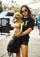 NYFW Street Style 2019: Day 4 #16