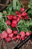 """Shop the Nutrition Rainbow"" Tour at Sag Harbor Farmers' Market #7"