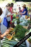 """Shop the Nutrition Rainbow"" Tour at Sag Harbor Farmers' Market #40"