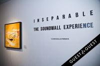 Inseparable the Soundwall Experience X #119