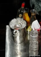 Akvinta Vodka presents Tinsley Mortimer #49