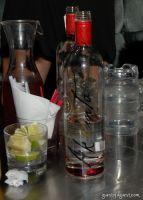Akvinta Vodka presents Tinsley Mortimer #54