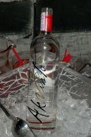 Akvinta Vodka presents Tinsley Mortimer #91
