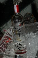 Akvinta Vodka presents Tinsley Mortimer #96