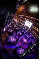 Brazil Foundation XII Gala Benefit Dinner NY 2014 #125