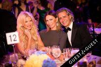 Brazil Foundation XII Gala Benefit Dinner NY 2014 #160