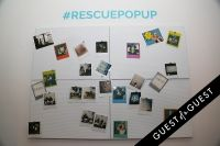#RESCUEPOPUP at Wallplay #82