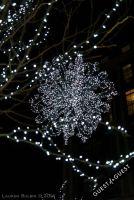 Pike & Rose Christmas Tree Lighting #59