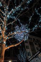 Pike & Rose Christmas Tree Lighting #81