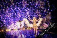 Victoria's Secret 2014 Fashion Show #210
