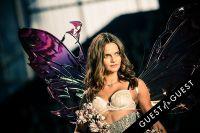 Victoria's Secret 2014 Fashion Show #372