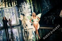 Victoria's Secret 2014 Fashion Show #388