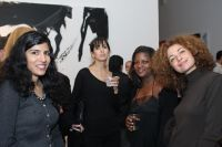 Miami in New York: Party at the Chelsea Art Museum #34