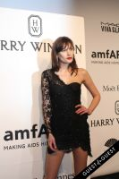 amfAR Gala New York #111