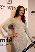 amfAR Gala New York #153