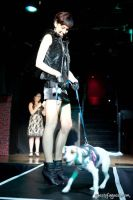 Animal Cares Gala #82