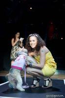 Animal Cares Gala #93