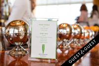 NY Sunworks 7th Annual Greenhouse Fundraiser #91