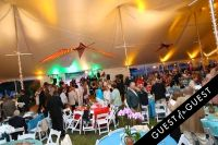 East End Hospice Summer Gala: Soaring Into Summer #30