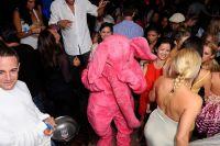 Pink Elephant 13 June 09 #18