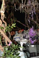 Diffa's Dining by Design: Cocktails by Design #16